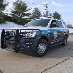 2018+ Ford Expedition Grille Guard with Horizontal Bars